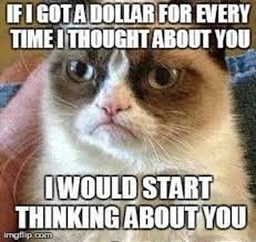 Angry Cat Meme - if i got a dollar for cat meme cat planet cat planet