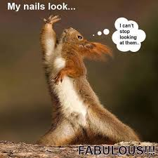 Funny Nail Memes - why jamberry to have fab nails at all times and get a discount on