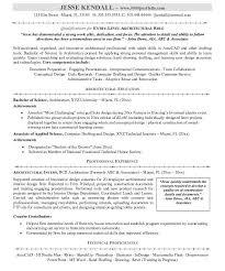 sensational ideas resume summary examples entry level 12 entry