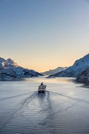 scandinavian cruise northern lights see the northern lights via norway travel destinations pinterest