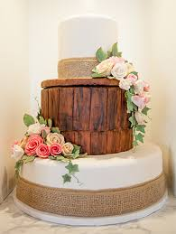 custom cakes custom cakes cakes custom cakes in maple grove woodbury