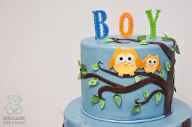 owl cakes for baby shower boy baby shower cake gainesville fl bearkery bakery