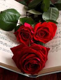 red roses spectacular flowers and heavenly gardens pinterest