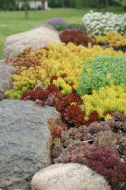 Images Of Rock Garden by 362 Best Dry Creek Beds And Rock Gardens Images On Pinterest