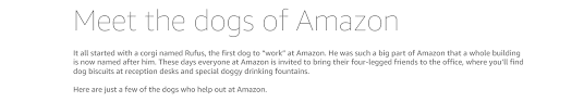 How To Write A Resume For Child Care Job by About Amazon Working At Amazon Dogs Of Amazon