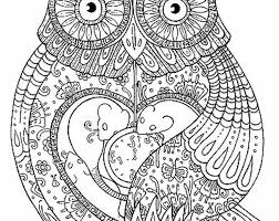 owl coloring pages for adults at free coloring pages eson me