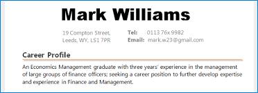 resume profile summary