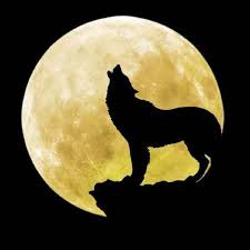 coincidence of wolf moon venus friday 13th sparks and