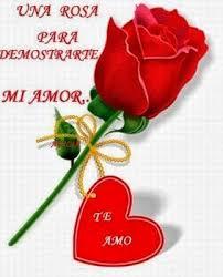 bonitas de rosas rojas con frases de amor imagenes de amor facebook rosas rojas con frases de amor para el whatsapp hoy imágenes