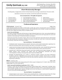 Bank Manager Sample Resume Sample Resume Business Relationship Manager Resume Ixiplay Free