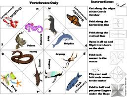 and invertebrate animals activity foldable scoot game quiz