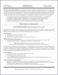 Salesperson Resume Example Sales Resume Example