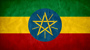Lion Flag Ethiopia From Lion Of Judah To Economic Lion Africa On The Rise