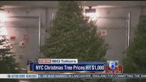 christmas tree prices new york city vendor sells 1 000 christmas tree 6abc