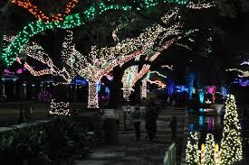 san antonio zoo lights coupon coupon houston zoo lights freebies journalism