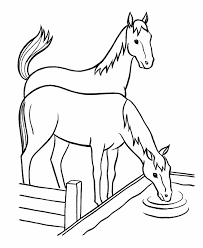 nature food types coloring pages drinking horse coloring