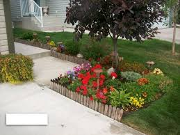 affordable backyard designs minimalist diy landscaping with small