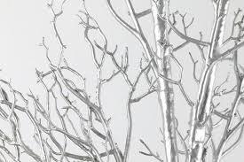 manzanita branches centerpieces 12 20 silver manzanita branches free shipping 100 fresh