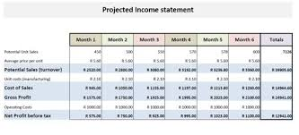 projected profit and loss statement template profit and loss