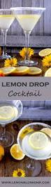 cocktail drinks recipe easy 1741 best alcohol added images on pinterest beverage eat and