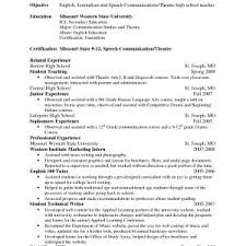 sle mba resume sle resume of management professor fresh mba lecturer resume s