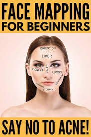 Face Mapping Acne 220 Best Beauty Images On Pinterest Make Up Beauty Makeup And