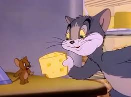 tom jerry cartoon archives jhang tv