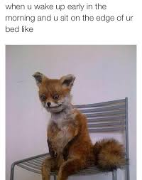 Bed Meme - waking up after a long night of partying sitting on the edge of