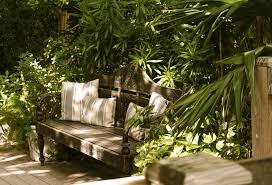 turn your backyard into tropical paradise with tips from the pros