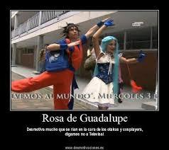 Rosa De Guadalupe Meme - image 163834 namiko moon know your meme