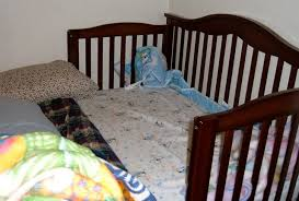 How To Convert Crib Into Toddler Bed Peaceful Parenting Turn Your Crib Into A Cosleeper