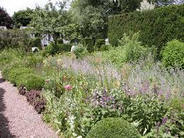 five easy ways to fix an overgrown garden
