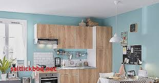 plinthe cuisine leroy merlin plinthe meuble cuisine leroy merlin pour idees de deco de cuisine