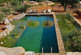 Natural Swimming Pool Natural Swimming Pools Hotels Cottages B U0026bs Green Places To Stay