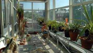 greenhouse facilities the department of biology