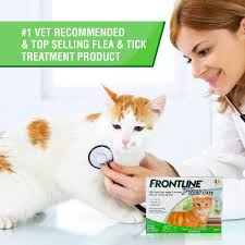 amazon com frontline plus flea and tick control for cats and