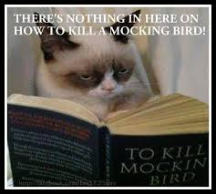 To Kill A Mockingbird Meme - funny grumpy cat memes onlyfatrabbit page 6