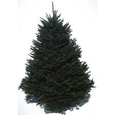 lowes trees 2016lowesbfimg7 pre lit slim at