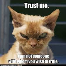 Mess Meme - lolcats dont mess with me lol at funny cat memes funny cat