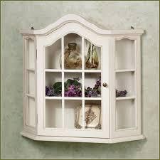 Glass Door Kitchen Wall Cabinet Curio Cabinet Curio Cabinet Singular Wall Hanging Curioinet