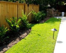 Backyard Landscaping Ideas For Privacy Backyard Landscape Ideas