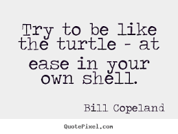The Quot Be Like Bill - inspirational quotes try to be like the turtle at ease in your