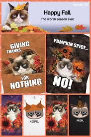 grumpy cat on dress up for thanksgiving no new fall