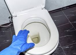 How To Use A Bidet Toilet Seat How To Remove Human Urine Stains From A Toilet Seat Hunker