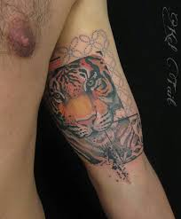 tiger arm best ideas gallery