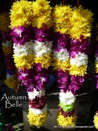 hindu garland 14 best flowers images on hindus flower garlands and