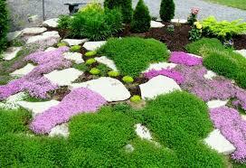 Rock Gardens Ideas Garden Rock Gardens Ideas For Stunning Livingroom Design Modern