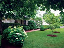 Simple Landscape Ideas by Ideas Austin Tx Make Your House In U2013 Easy Simple Landscaping Ideas