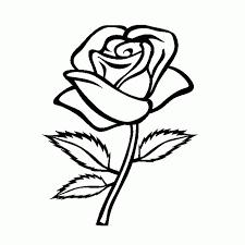 imagenes para colorear rosas dibujo de rosas dibujo para colorear de rosas dibujos infantiles