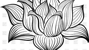 lotus flower outline drawing lotus flower drawing outline